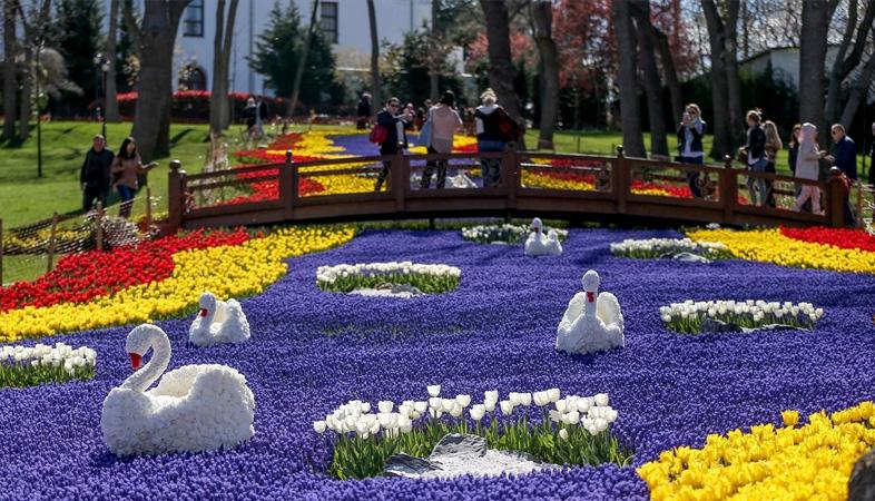 festival-lala-u-istanbulu